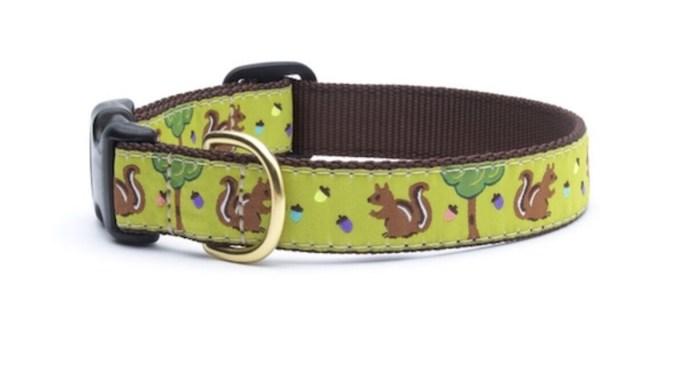 83 Squirrel Collar- Dog Sz Xs