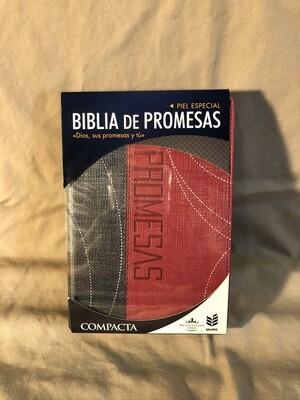 Biblia De Promesas