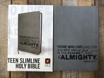 Teens Slimline Holy Bible