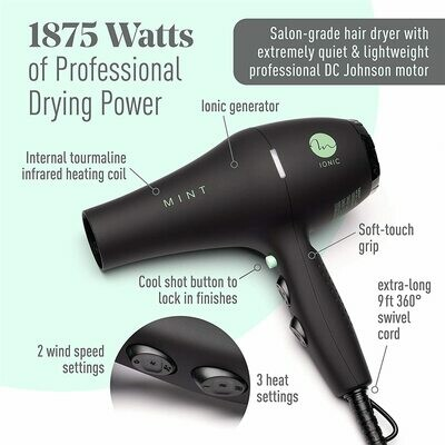 Professional Series BLACKBIRD Ionic Hair Blow Dryer with Diffuser by MINT. 1875 Watts.