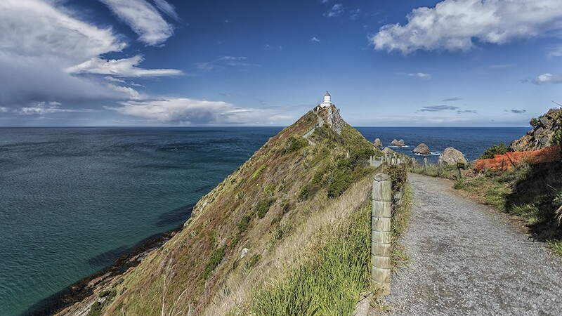 Nugget Point, New Zealand 3008