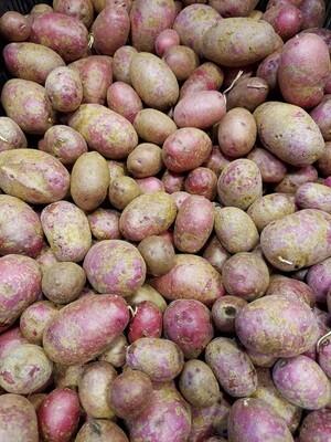 Potatoes, New ** - per lb Simple Gifts Farm