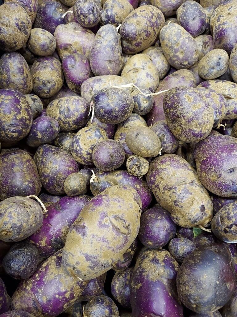 *SGF New Potatoes Blue 1 lb