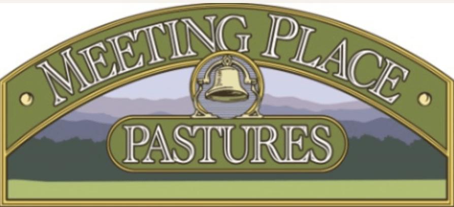 Meeting Place Pastures Grassfed T-BONE STEAK