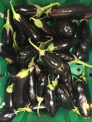 *SGF Globe Eggplant 1 lb