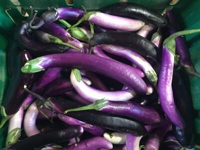*SGF Long Eggplant 1 lb