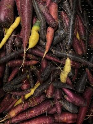 *Simple Gifts Farm Rainbow Carrots 1 lb