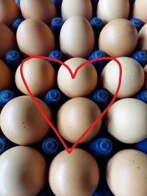 *SALE* Simple Gifts Farm Eggs - 2 dozen for $14