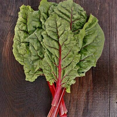High Mowing SEEDS Ruby Red Chard