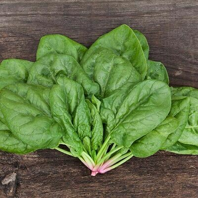 High Mowing SEEDS Butterflay Spinach