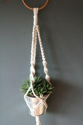 Macramé Plant Hanger with succulent and pot