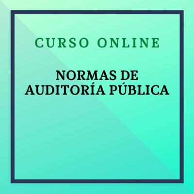 Normas de Auditoría Pública. Del 8 noviembre - 5 diciembre  2021