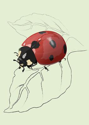 Ladybird - Illustrated Art Print
