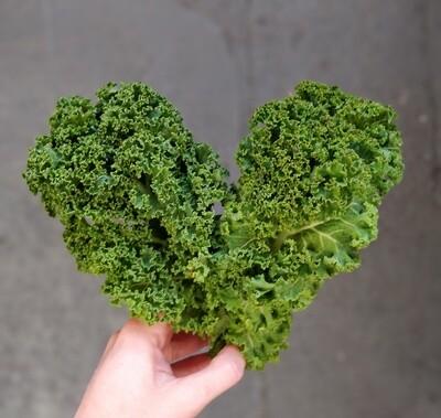 Organic Kale 100g
