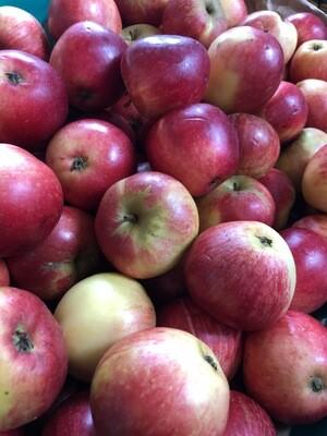 Irish Apples 100g