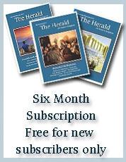 Six Months Subscription