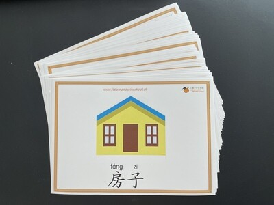 Picture-word cards + video (at home, transportation)