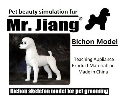 Bichon Model Dog