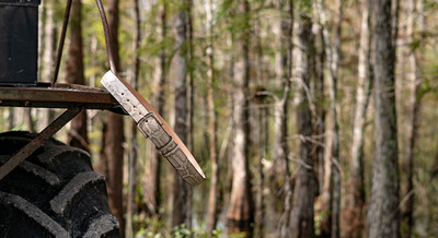 Wildman Classic Belt - Everglades Collection