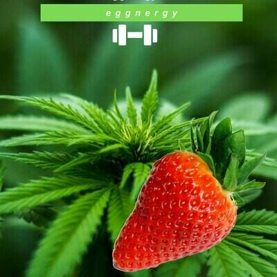 Chanvre protéine bio en poudre avec des fraises: 1 kg - 100% Végan