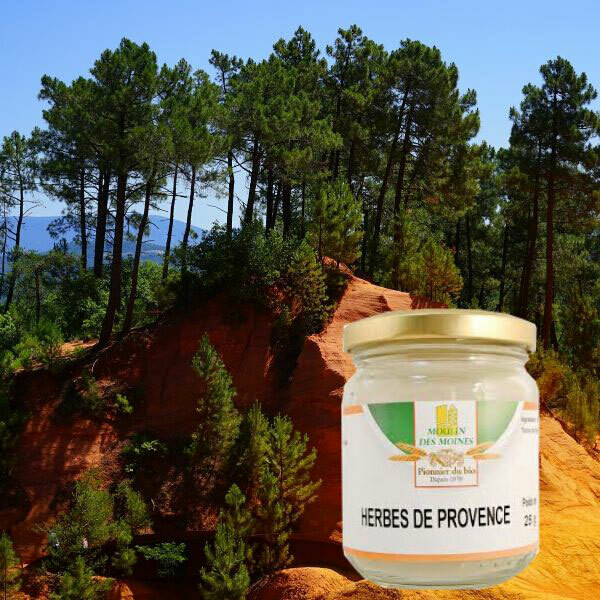 Herbes de Provence: pot de 25 g