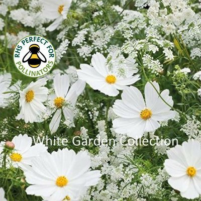 White Garden Seed Collection
