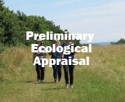 Preliminary Ecological Appraisal and Report Writing - PEA (Exeter): 29th & 30th May 2021