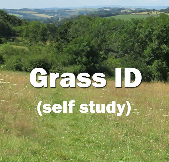 Grass Identification Self-study course
