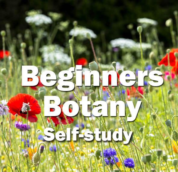 Beginners Botany **NEW** Self-Study