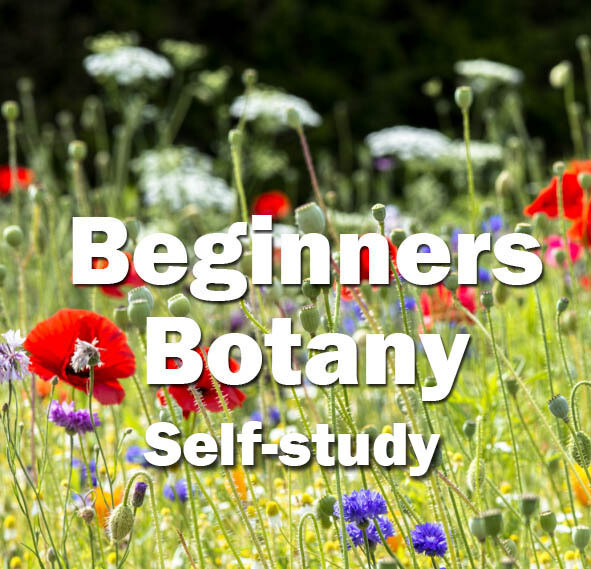 Beginners Botany Self-Study