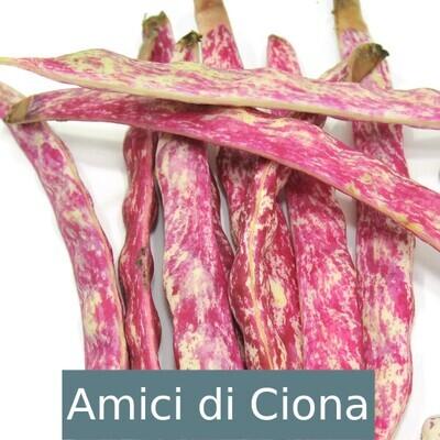 Fagioli borlotti (1kg)