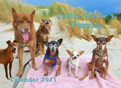Little Belle's Family Calendar 2021