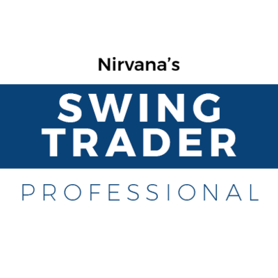 Swing Trader: Professional