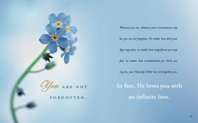 Forget Me Not   Deseret Book Forget Me Not