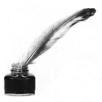Penna d'oca