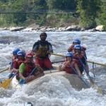 presi raft con viActive