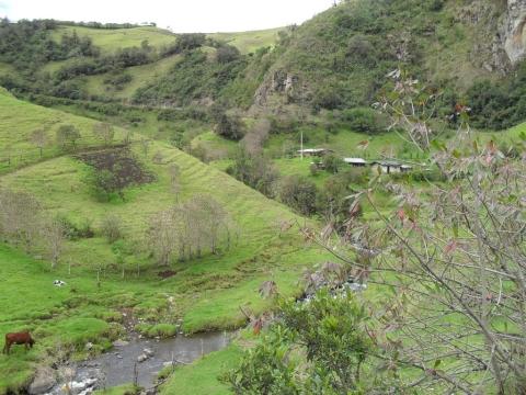 Entre Popayan y San Agustín