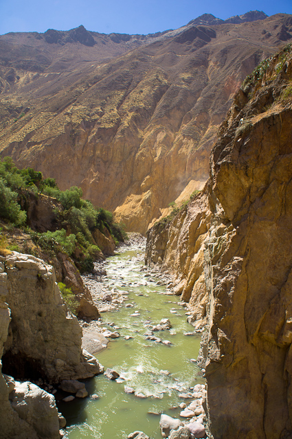 Trekking in the Colca Canyon, Peru