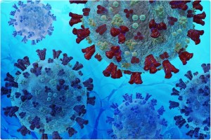 Comparative study on SARS, MERS, BAT – SARS and SARS-CoV-2