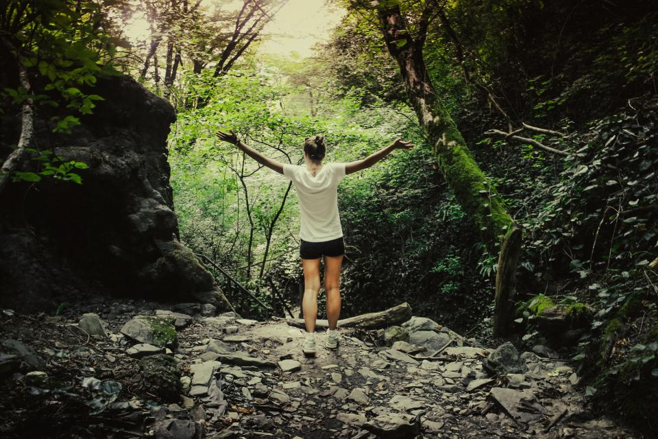nature landscape mountain trees woods forest people woman trek adventure travel rocks trees green exercise