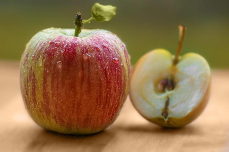 red apple fruit food juicy health seed wet waterdrop blur