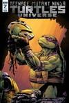 Teenage Mutant Ninja Turtles Universe #7 (Subscription Variant)