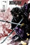 Ninjak #22 (Cover A - Segovia)