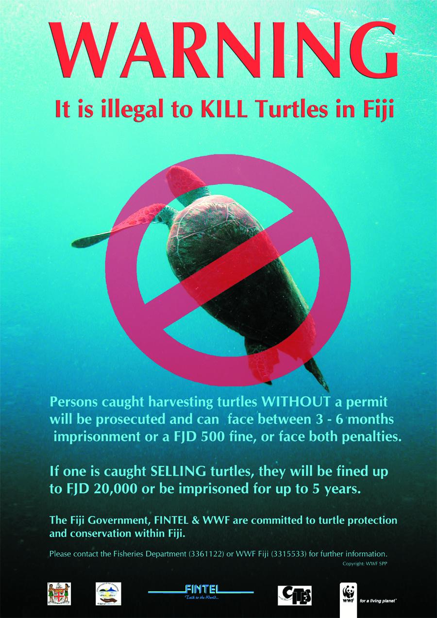 Poster Turtle Warning Wwf