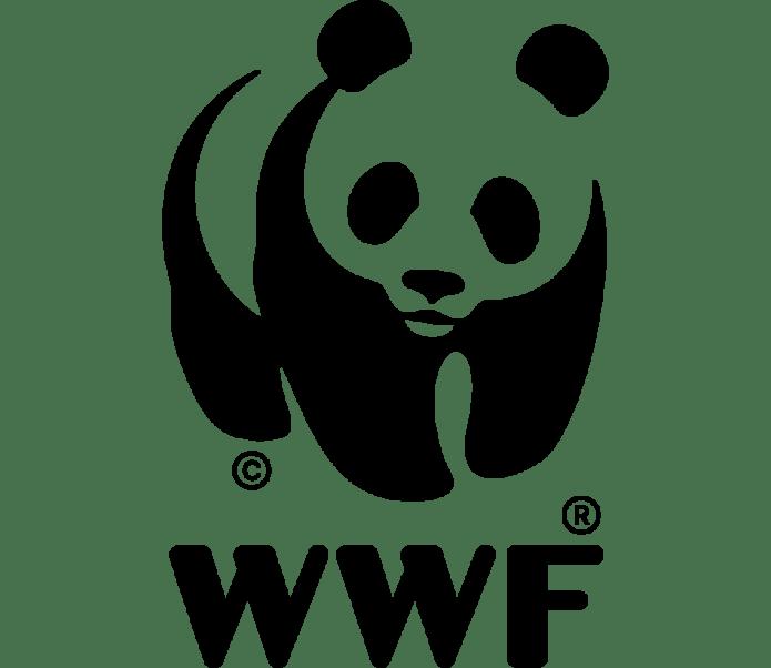WWF: más de 50 años siendo la organización independiente de conservación  líder del mundo | WWF