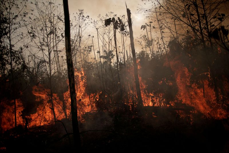 Exclusive: European investors threaten Brazil divestment over deforestation