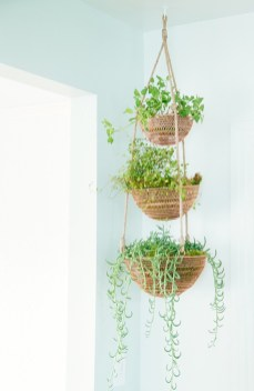 Indoor hanging planters you can make yourself 01