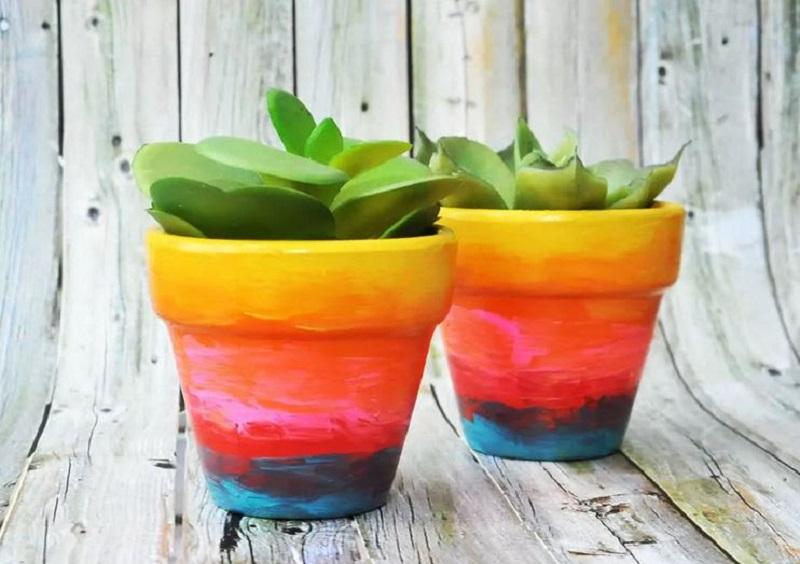 Rainbow flowers pots