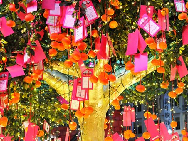 Chinatown Chinese New Year 2014 Wishing Tree HoneyKids Asia