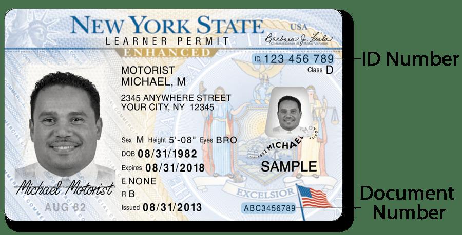 North License 2013 Drivers Carolina North License Drivers Carolina 2013